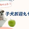 【子犬のお迎えセット】ペットスペースに準備したもの